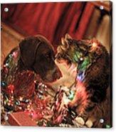 Kiss At Christmas Acrylic Print
