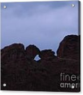 Kissing Camels Acrylic Print