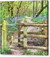 Kissing Gate Watercolour Acrylic Print