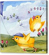 Kites In March Acrylic Print