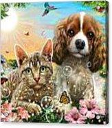Kitten And Puppy Acrylic Print