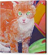 kittens With A Ball of Wool Acrylic Print