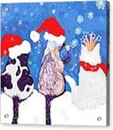 Kitty Christmas Acrylic Print