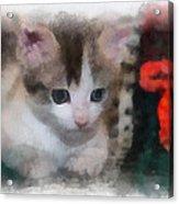 Kitty Photo Art 01 Acrylic Print