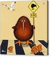 Kiwi Birds Crossing Acrylic Print