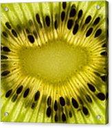 Kiwi Fruit Macro 2 Acrylic Print