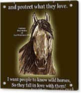 Know Wild Horses Poster-huricane Acrylic Print by Linda L Martin