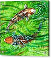 Koi Carps Acrylic Print