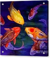 Koi Friends Acrylic Print