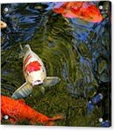 Koi Pond Acrylic Print