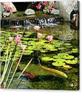 Koi Pond Acrylic Print by Doug Kreuger