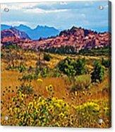 Kolob Terrace Road In Zion National Park-utah Acrylic Print