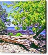 Kona Coast Acrylic Print