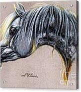 Kordelas Polish Arabian Horse Soft Pastel Acrylic Print