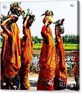 Kumaoni Ladies Acrylic Print
