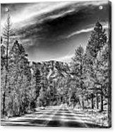 Kyle Canyon Road Acrylic Print
