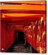 Kyoto Fushimi Shrine-5 Acrylic Print