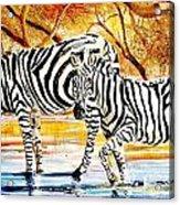 L 155 Acrylic Print