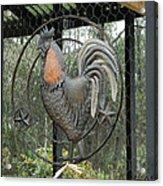 La Decoration Sur La Cage De Poulet Acrylic Print