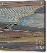 La Mancha Landscape - Spain Series-ocho Acrylic Print