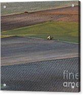 La Mancha Landscape - Spain Series-siete Acrylic Print