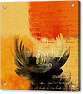 La Marguerite - 194191203-ro01t Acrylic Print