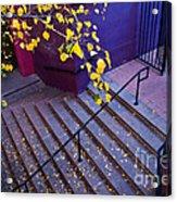 La Placita Village Acrylic Print