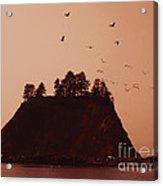 La Push Silhouette With Birds Acrylic Print by Kym Backland