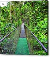 La Tirimbina Suspension Bridge Acrylic Print