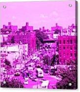 La Vie En Rose Le Bronx Acrylic Print