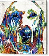 Labrador Retriever Art - Play With Me - By Sharon Cummings Acrylic Print