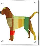 Labrador Retriever Acrylic Print