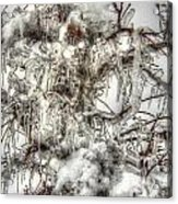 Labyrinth Of Ice Acrylic Print
