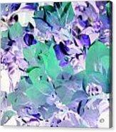 Lace Acrylic Print