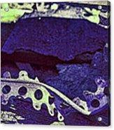 Lace II Acrylic Print