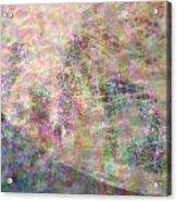 Lacunarity Acrylic Print