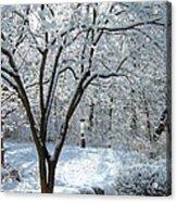 Lacy Snowfall Acrylic Print
