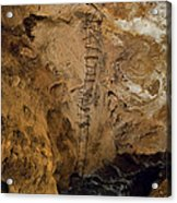 Ladder To The Center Of The Earth Acrylic Print