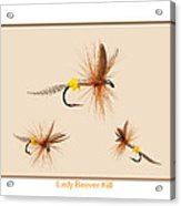 Lady Beaver Kill II Acrylic Print by Neal Blizzard