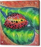 Ladybug On A Leaf Acrylic Print by Debbie Nester
