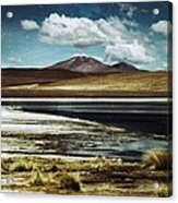 Lagoon Grass Bolivia Vintage Acrylic Print