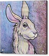 Lagos The Noble Hare Acrylic Print