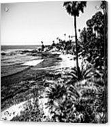 Laguna Beach Pacific Ocean Shoreline In Black And White Acrylic Print