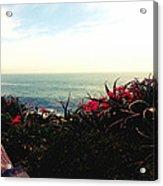 Laguna Beach Seascape Acrylic Print