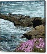 Lajolla Shore Acrylic Print