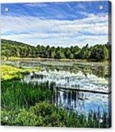 Lake At Acadia National Park Acrylic Print