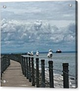 Lake Erie Gulls Acrylic Print