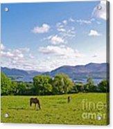 Lake Killarney From Aghadoe Hill County Kerry Acrylic Print