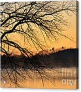 Lake Louise Sunrise Through The Trees Acrylic Print