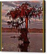 Lake Martin Louisiana Acrylic Print